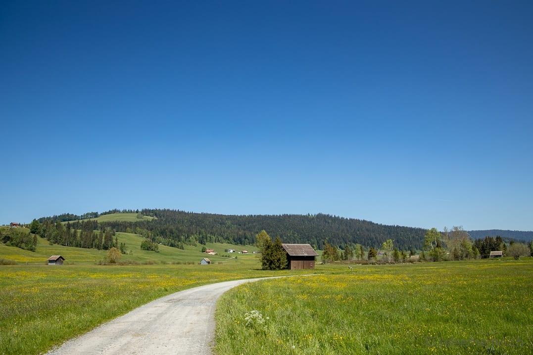 Wanderung auf der Rossbodenstrasse im Hochmoor von Rothenthurm