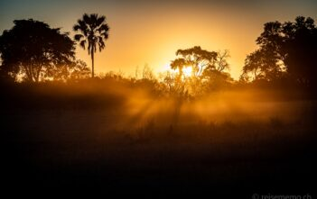 Sonnenuntergang über dem Okavango Delta