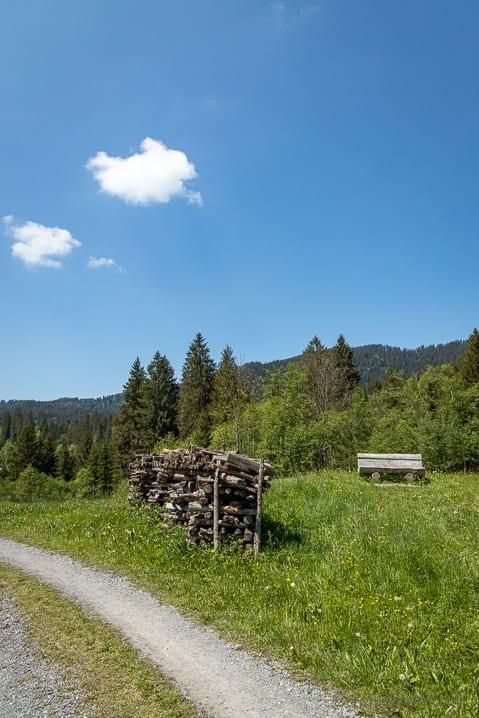 Wanderung im Hochmoor von Rothenturm