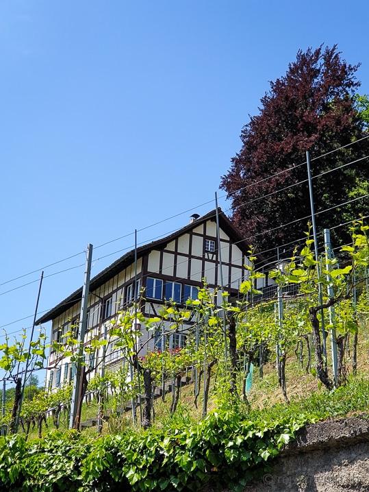 Winzerhaus bei Feldbach