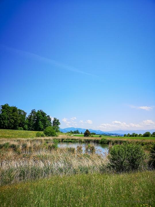 Naturschutzgebiet Stigelenweiher