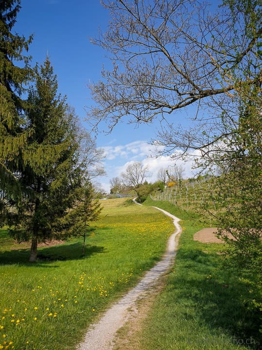 Wanderweg zur Stiftung Balm