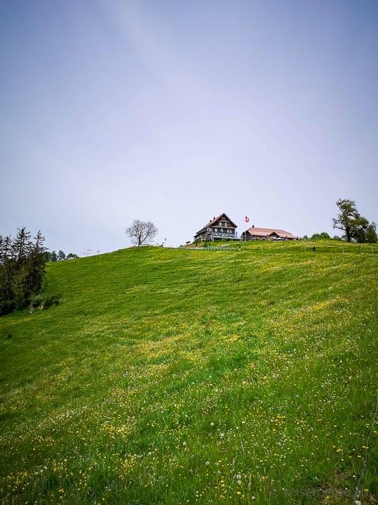 Wiese des Restaurants Alp Scheidegg