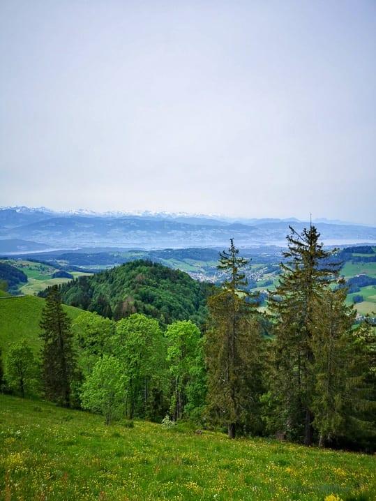 Aussicht vom Hüttchopf auf den Zürichsee und die Voralpen