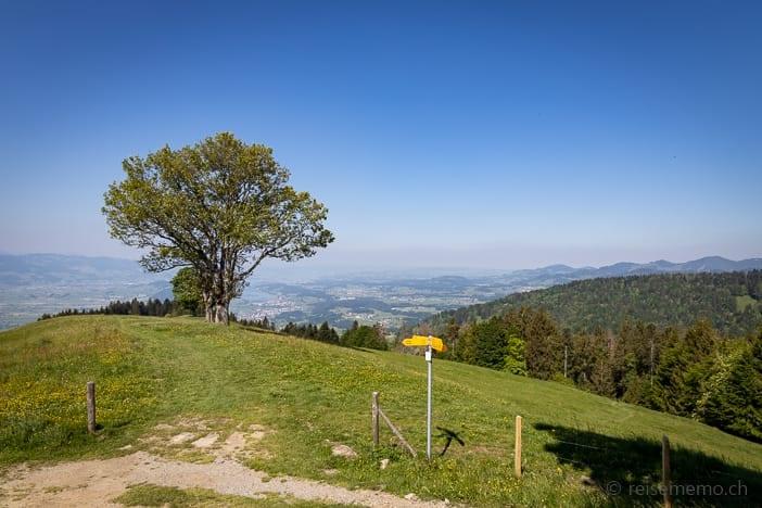 Aussicht Alp Wielesch