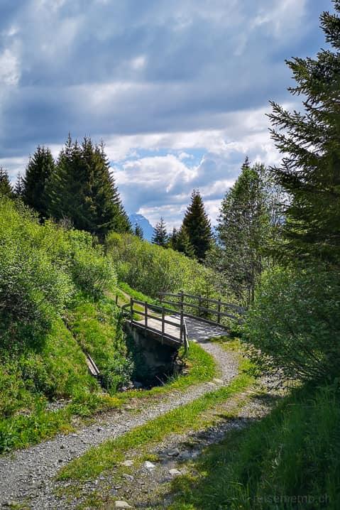 Wanderweg mit Brücke in Richtung Restaurant Malanser Älpli