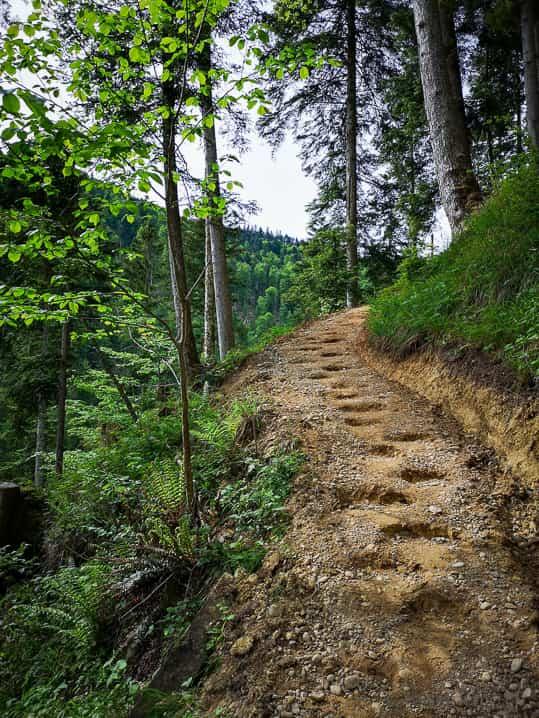 Wanderung, Wanderweg, wandern