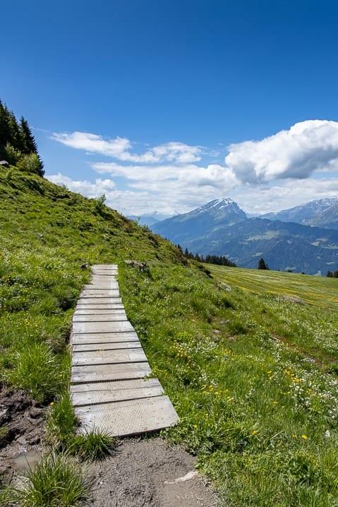 Haldensteiner Calanda Graubünden