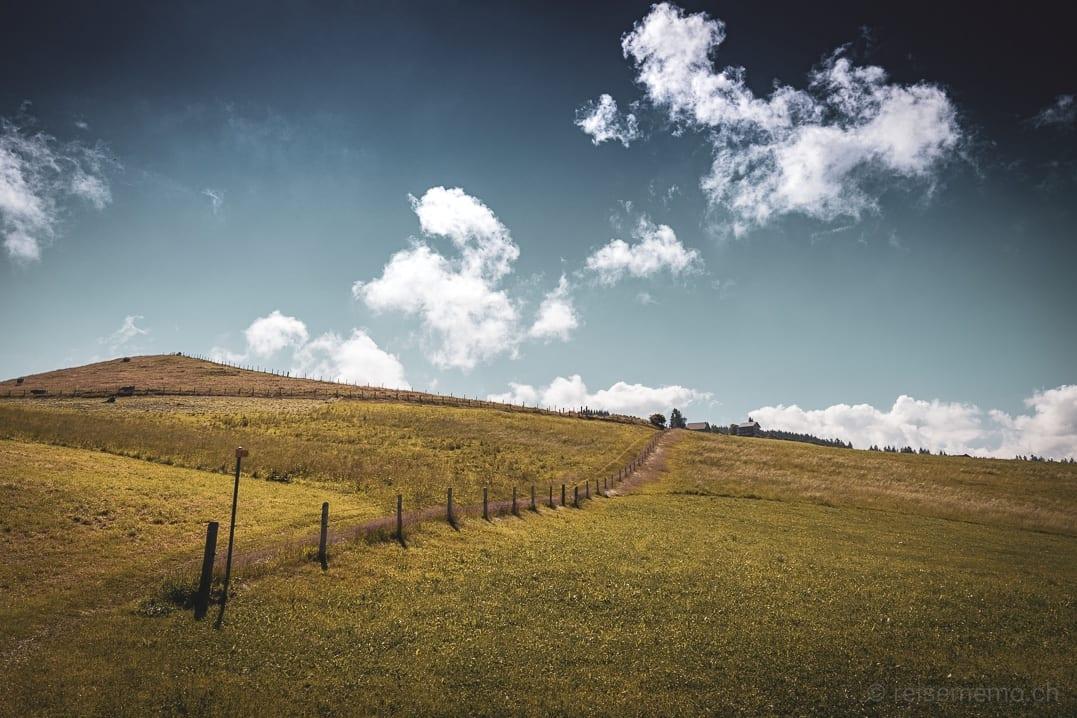 Wanderweg entlang des Zauns