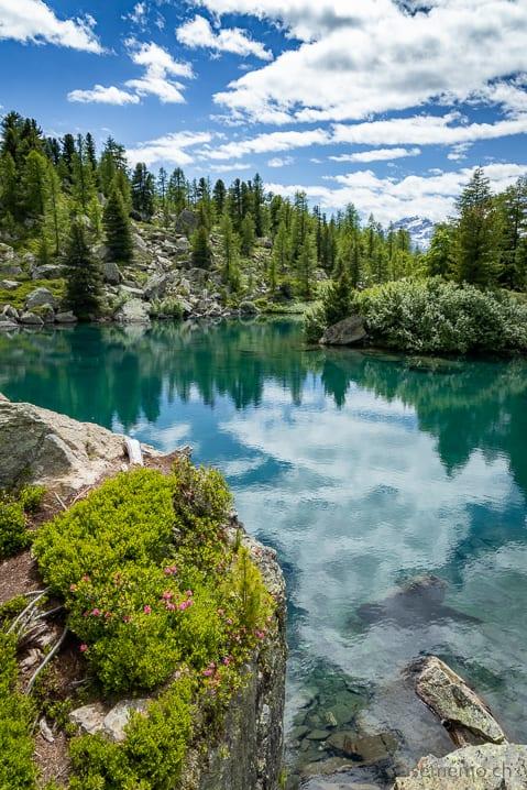 Insel im Lago di Val Viola