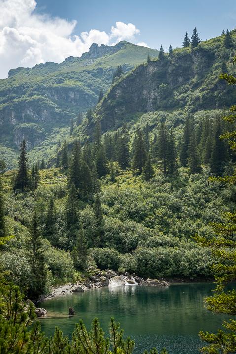 Wasserfall Niederenbach
