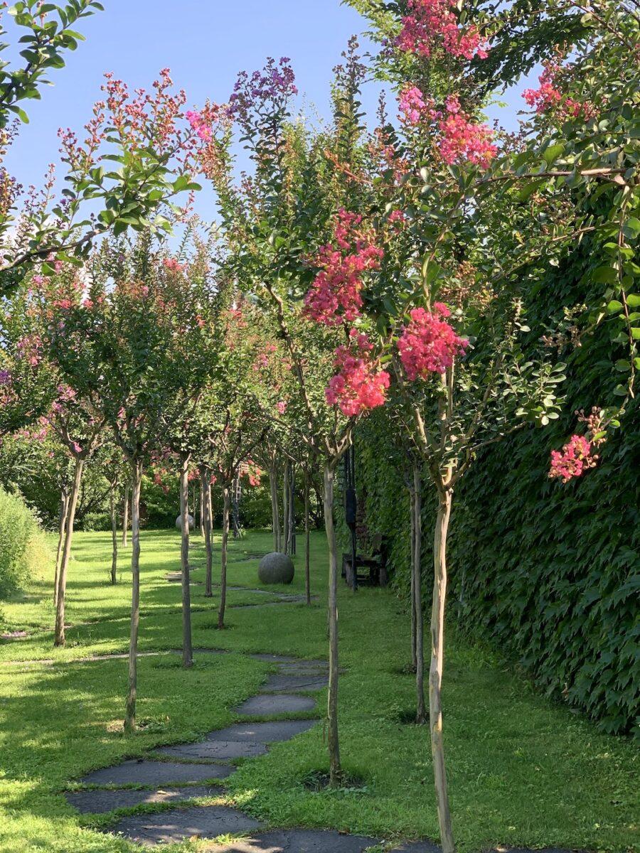 Garten Kränzelhof Tscherms