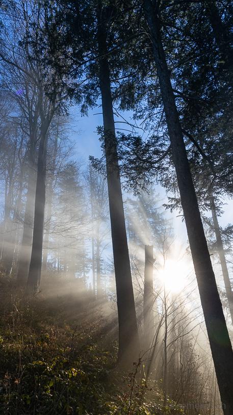 Lichtbrechung bei tief stehender Sonne