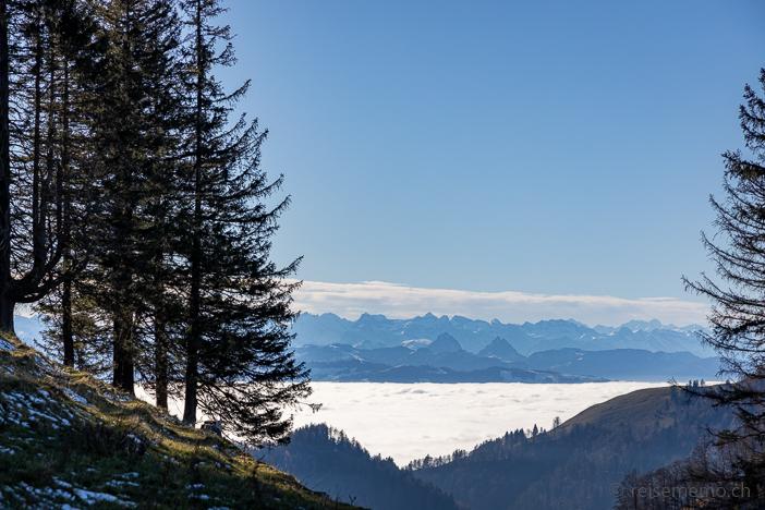 Alpen mit Grossem und Kleinem Mythen über dem Nebelmeer