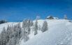 Alp Scheidegg im Winter
