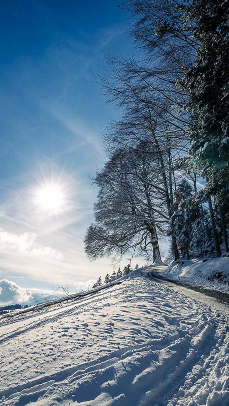 Alp Scheidegg Zürcher Oberland