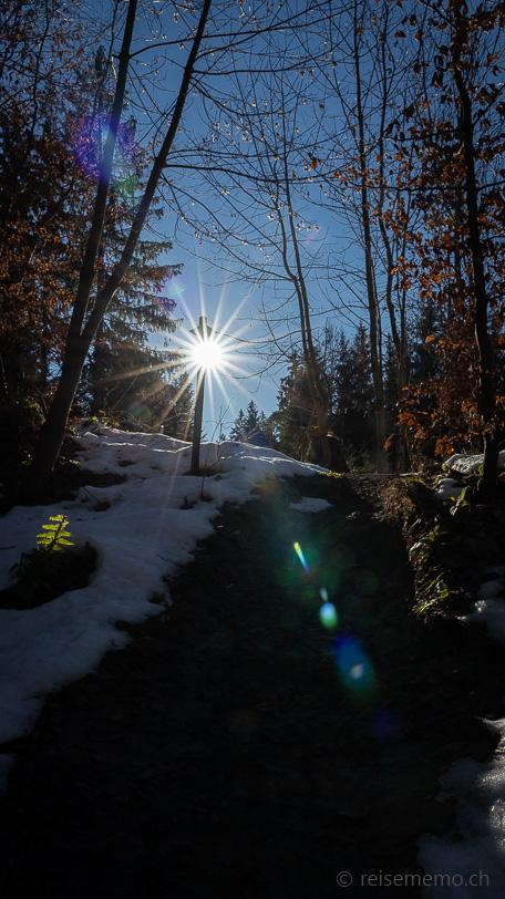 Winterlicher Wanderwegweiser bei tief stehender Sonne