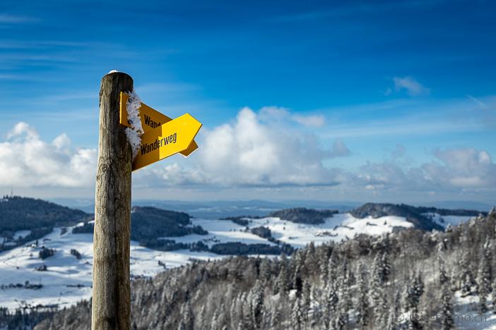 Wanderwegweiser auf der winterlichen Alp Scheidegg