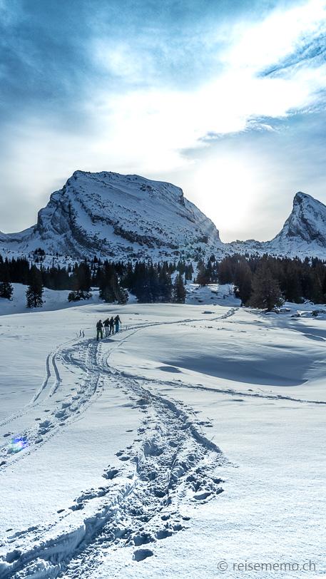 Winterwanderung: Schneeschuhwanderer vor den Churfirsten Brisi und Frümsel