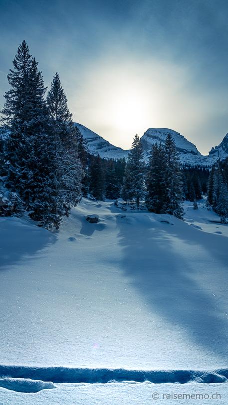 Winterlandschaft auf der Nordflanke der Churfirsten