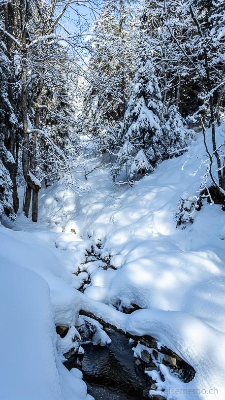 Chloterlibach in der Mythenregion unterhalb der Schnapshütte