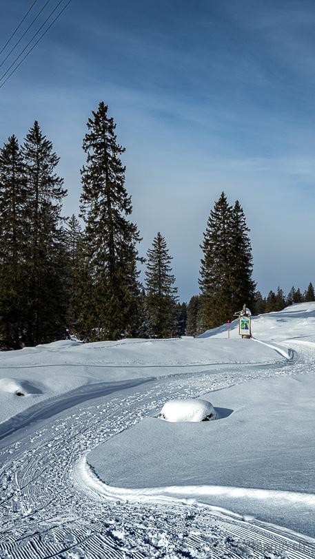Winterlicher Sagenweg auf der Alp Sellamatt mit Infotafel der nächsten Sage