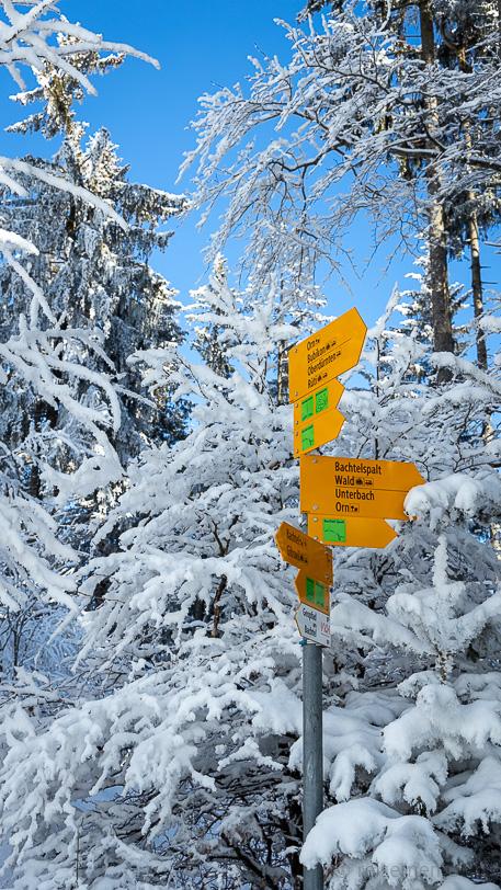 Winter beim Wegweiser zum Bachtel Kulm