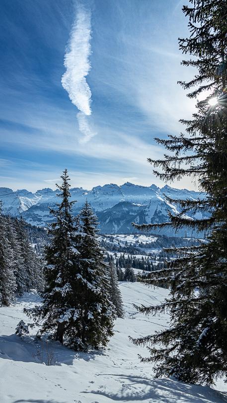 Sonnige Winterlandschaft Müsliegg