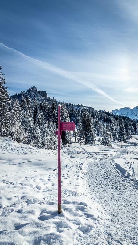 Pinkfarbener Winterwanderwegweiser unterhalb der Passhöhe Ibergeregg