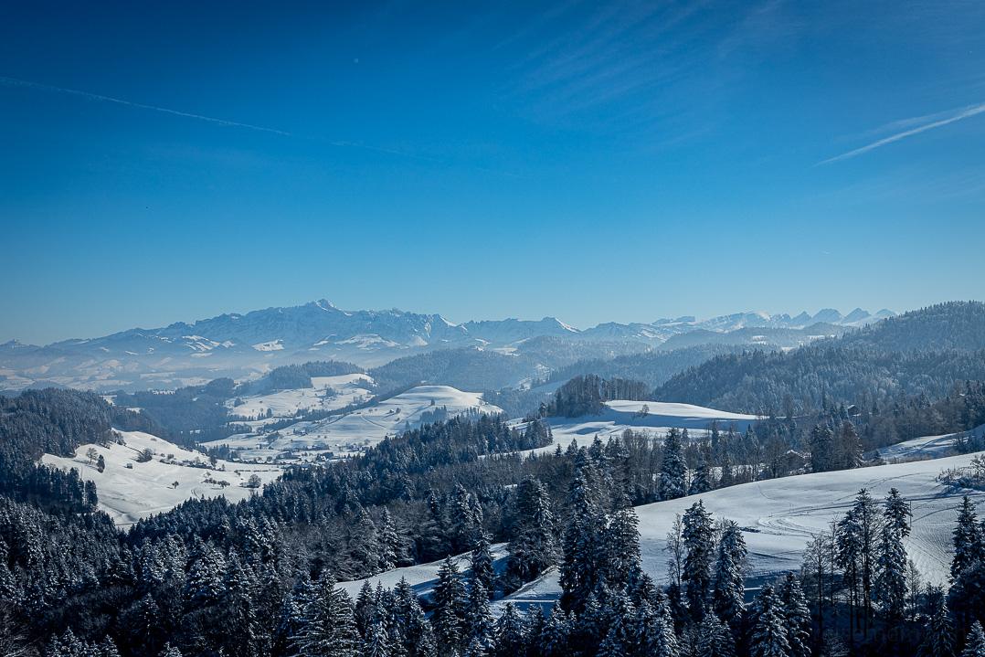 Winterliche Aussicht von Allenwinden auf den Säntis und die Churfirsten