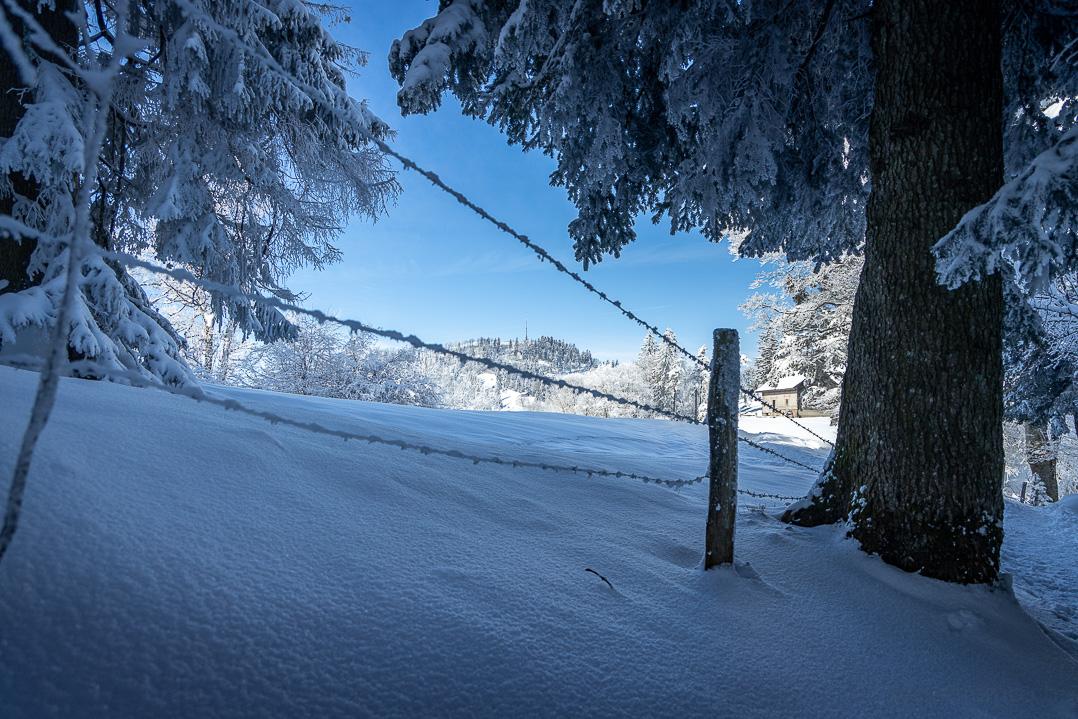 Hörnli Im Winter vom Hulftegg Rundweg aus