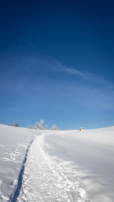 Beginn der Rundwanderung hinter dem Hulftegg Restaurant im Winter