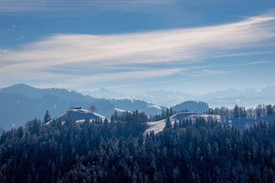Aussicht auf Storchenegg und Alpen