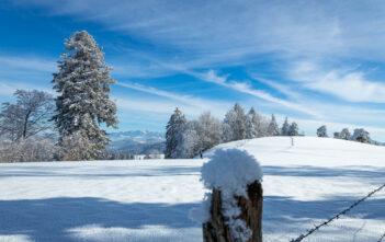 Winterlandschaft mit Sicht auf den Säntis