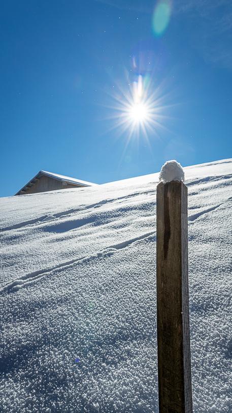 Schneehäubchen auf einem Pfosten