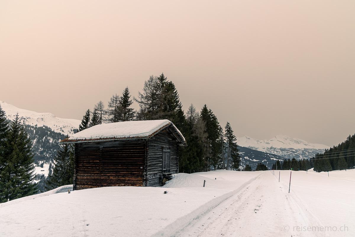 Winterwanderweg Mittelberg Parpan
