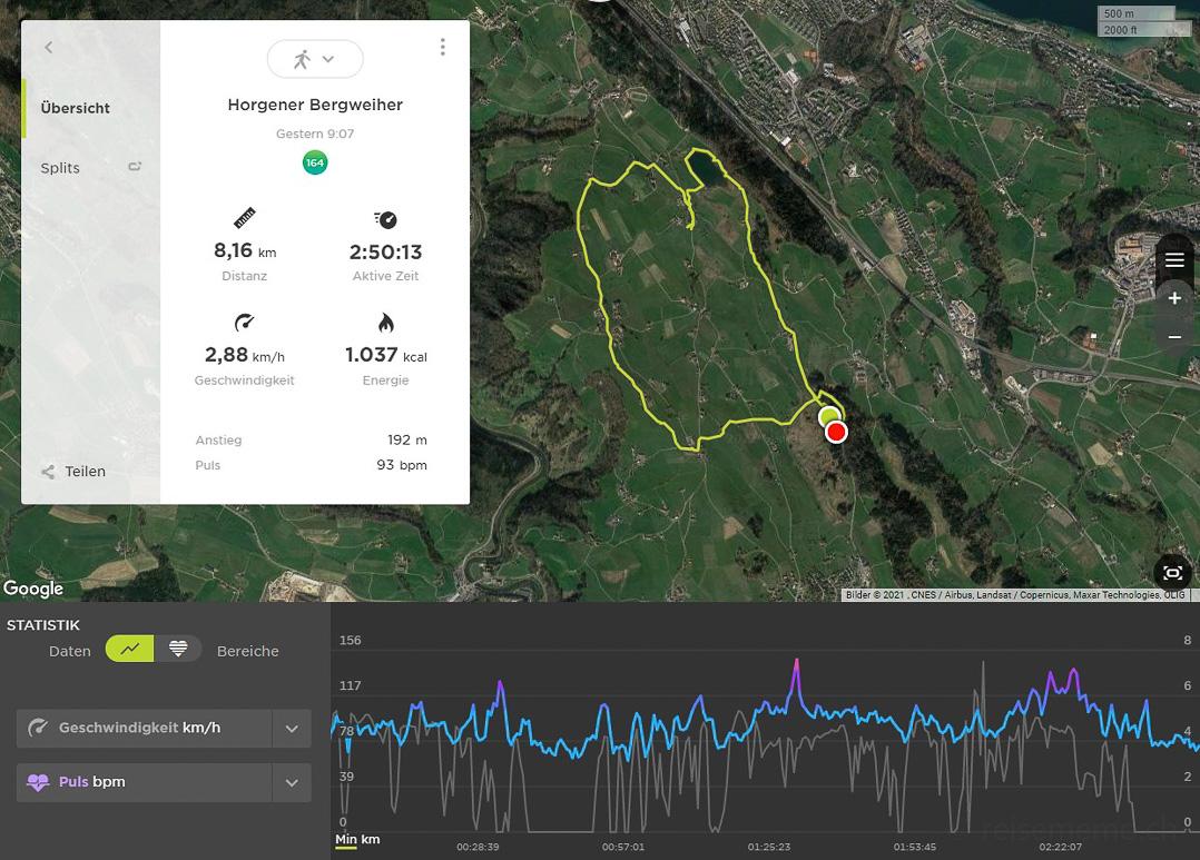 Tomtom-Route um den Horgner Bergweiher und die Hirzel Höchi