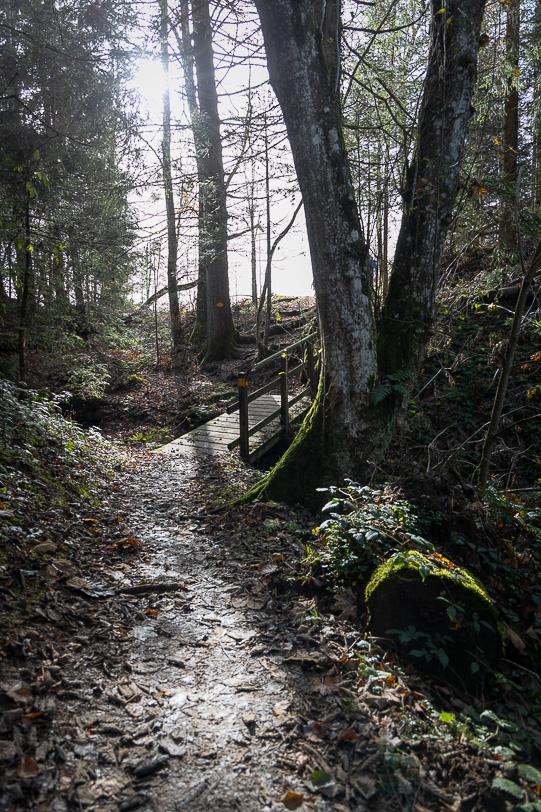 Zugerberg Wanderweg mit Steg über kleinen Bach