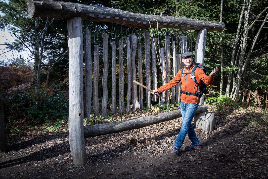 Walter am Klangspiel im Wald