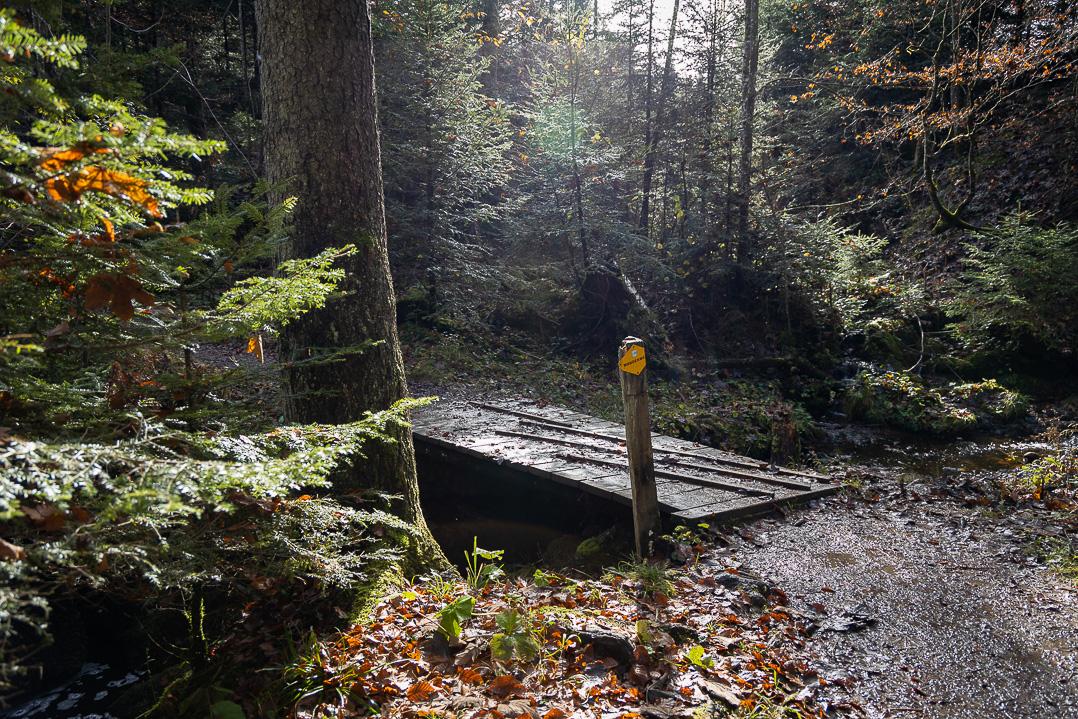 Zugerberg Wanderweg mit kleiner Brücke