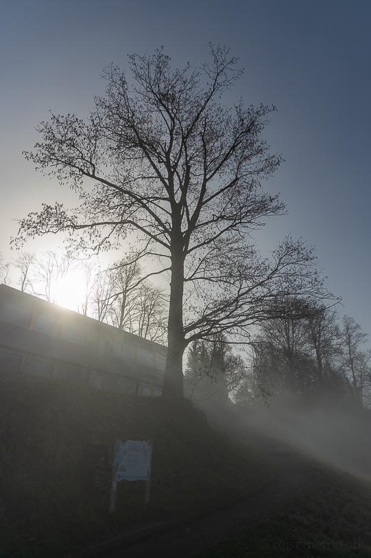 Nebel bei der Bergstation Zugerberg