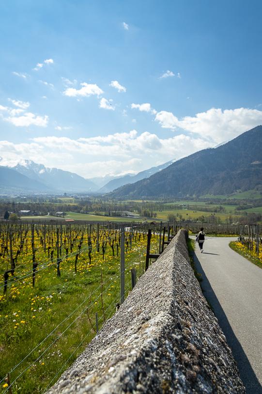 Katja wandert auf dem Weinweg