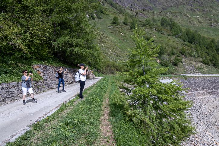 Katja, Alex und Gabi fotografieren am Ritomsee