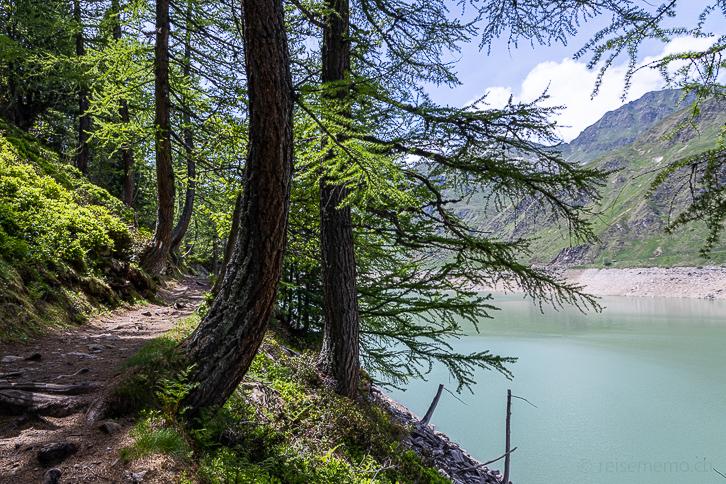 Schattiger Waldwanderweg mit Sicht auf den Ritomsee