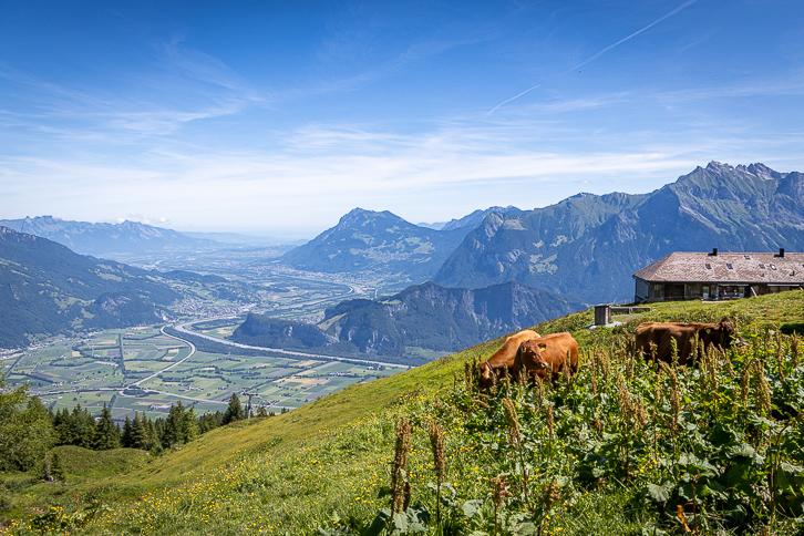 Ferienwohnung Alpstübli bei Pardiel