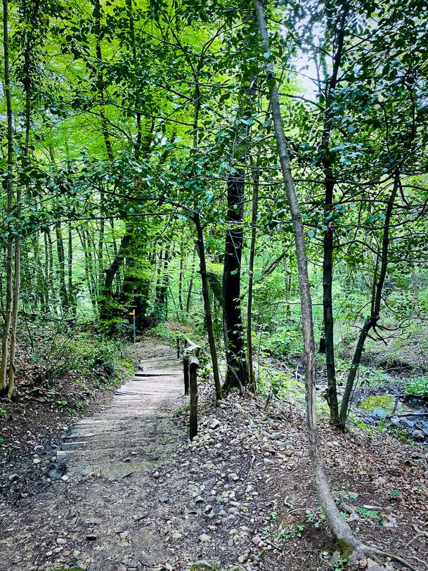 Wanderweg auf dem Monte San Giorgio