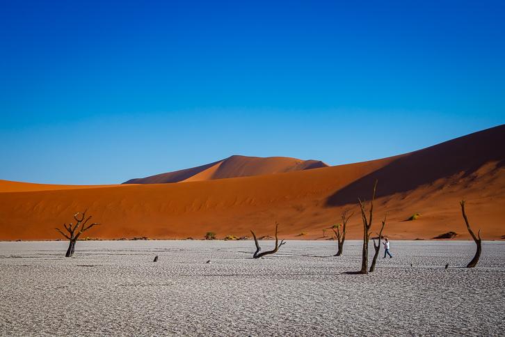 Tote Bäume und Sanddünen des Deadvlei