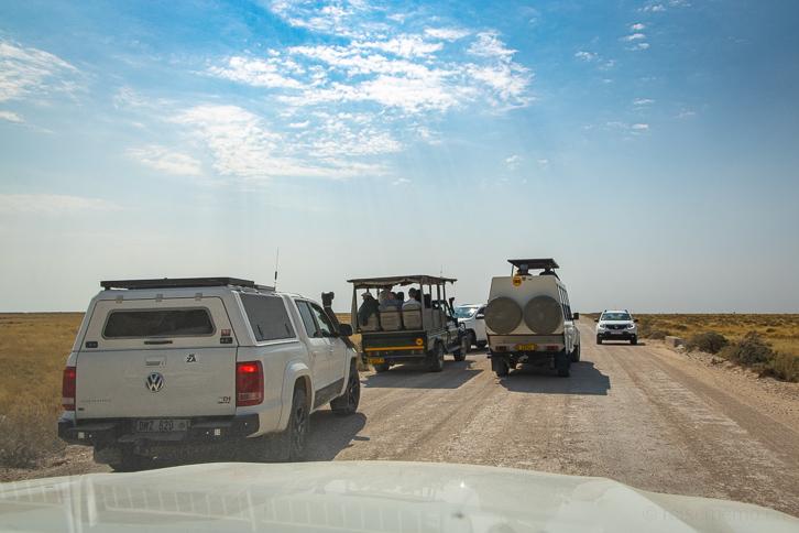 Safari-Jeeps im Etosha-Nationalpark