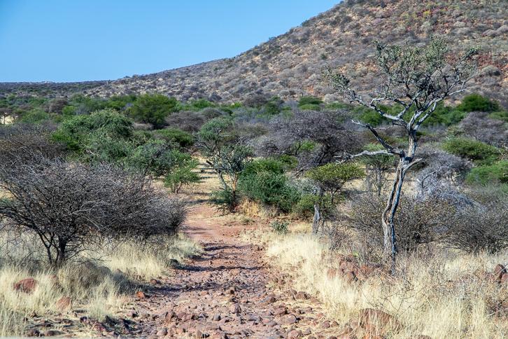 Geröll und Steigung einer Strasse im Naturreservat