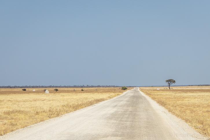 Schotterpiste im Etosha-Nationalpark